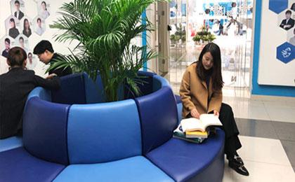 香港会计师考试科目有几门